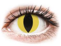 76452fe3e6 Alensa.co.uk - Contact lenses - Yellow Cat Eye contact lenses - ColourVue