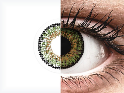 Green contact lenses - FreshLook One Day Color (10 daily coloured lenses)